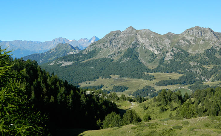 Montagna: Passeggiata da Courmayeur a Dolonne